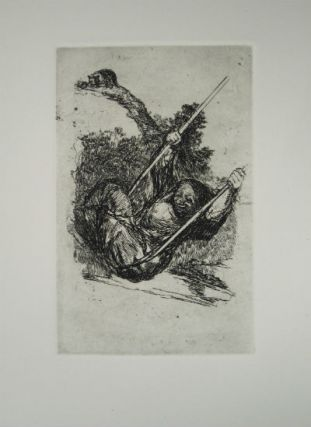 Late Caprichos of Goya: fragments from a series